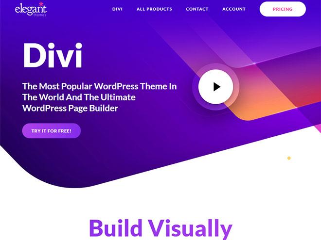 divi theme - elegant themes